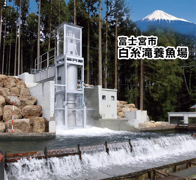 富士宮市白糸滝養魚場